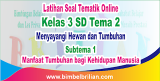 Soal Tematik Online Kelas 3 SD Tema 2 Subtema 1 Manfaat Tumbuhan bagi Kehidupan Manusia Langsung Ada Nilainya