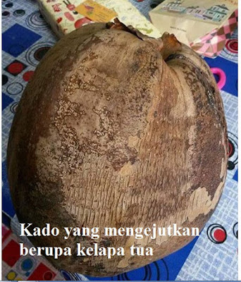Kado buah kelapa untuk guru