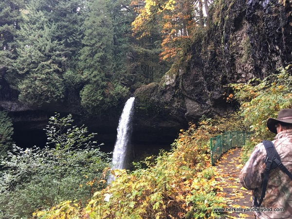 view of falls from North Falls Trail in Silver Falls State Park in Sublimity, Oregon