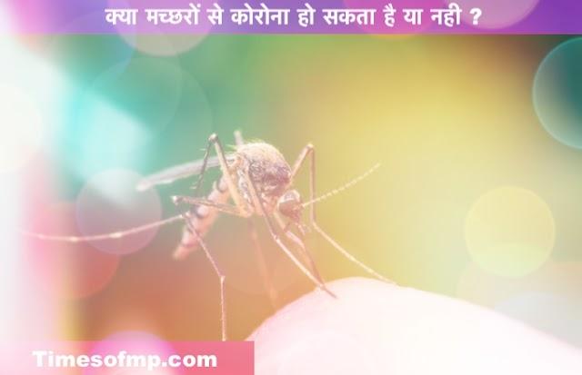 क्या मच्छर कोरोना के वाहक हो सकते हैं ? जानिए मच्छरों से किसी को कोरोना हो सकता है या नही? - Health News in Hindi