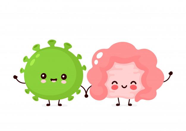macam macam bakteri