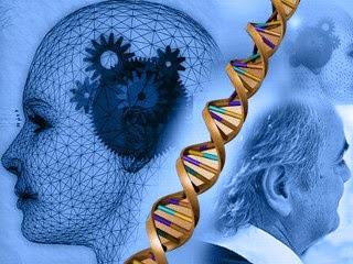O que é o mal de Alzheimer?