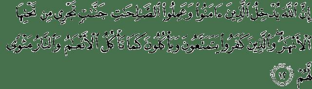Surat Muhammad ayat 12