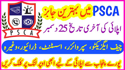 Punjab Safe Cities Authority Vacancies