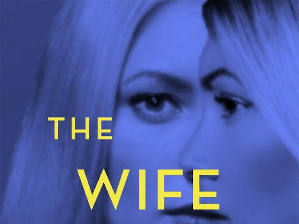 Domestic suspense or snoozefest? The Wife between Us Greer Hendricks and Sarah Pekkanen
