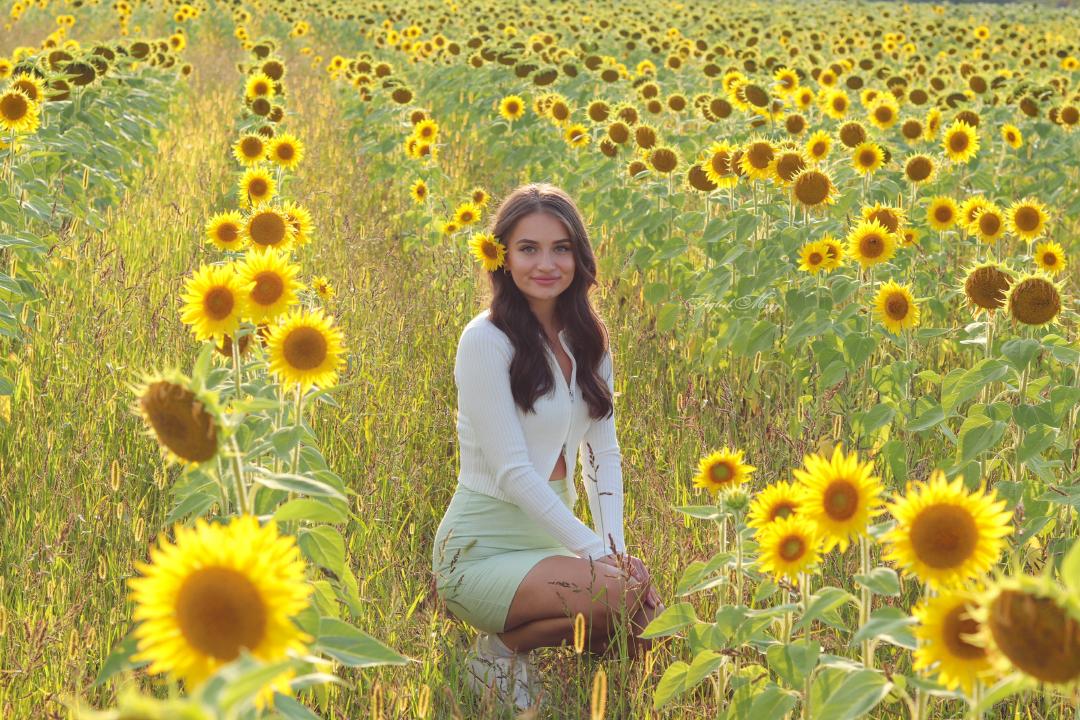 słonecznikowy raj