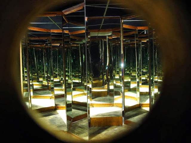Da Vinci The Genius Exhibit The Mind Museum Mirror Room