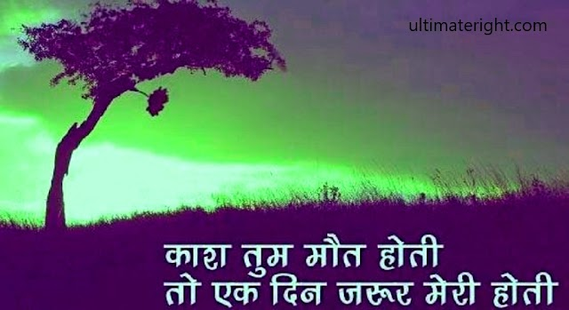 Latest 100+ Romantic Love Shayari in Hindi, True Love Status, Best Love Sms