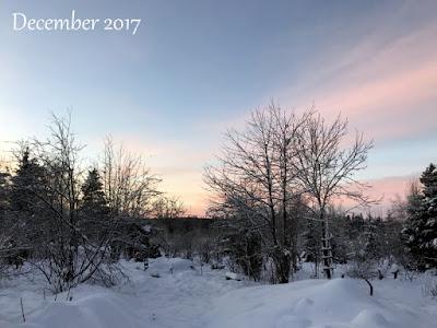 Månadsbild december 2017
