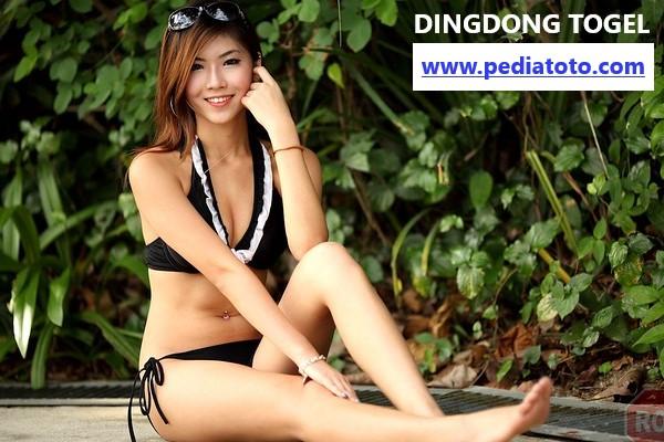 situs daftar dingdong togel