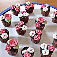 Cake Pops Blumentöpfe