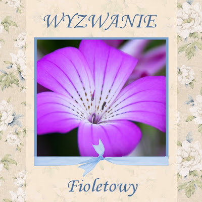 31 maj - fiolety