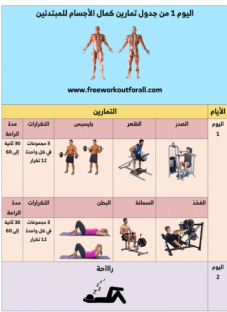 جدول تمارين كمال الاجسام للمبتدئين