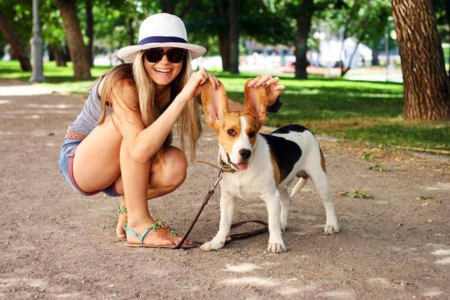 Akcesoria na spacer z psem