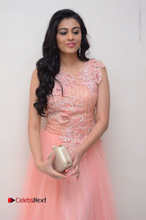Actress Neha Hinge Stills in Pink Long Dress at Srivalli Teaser Launch  0023.JPG