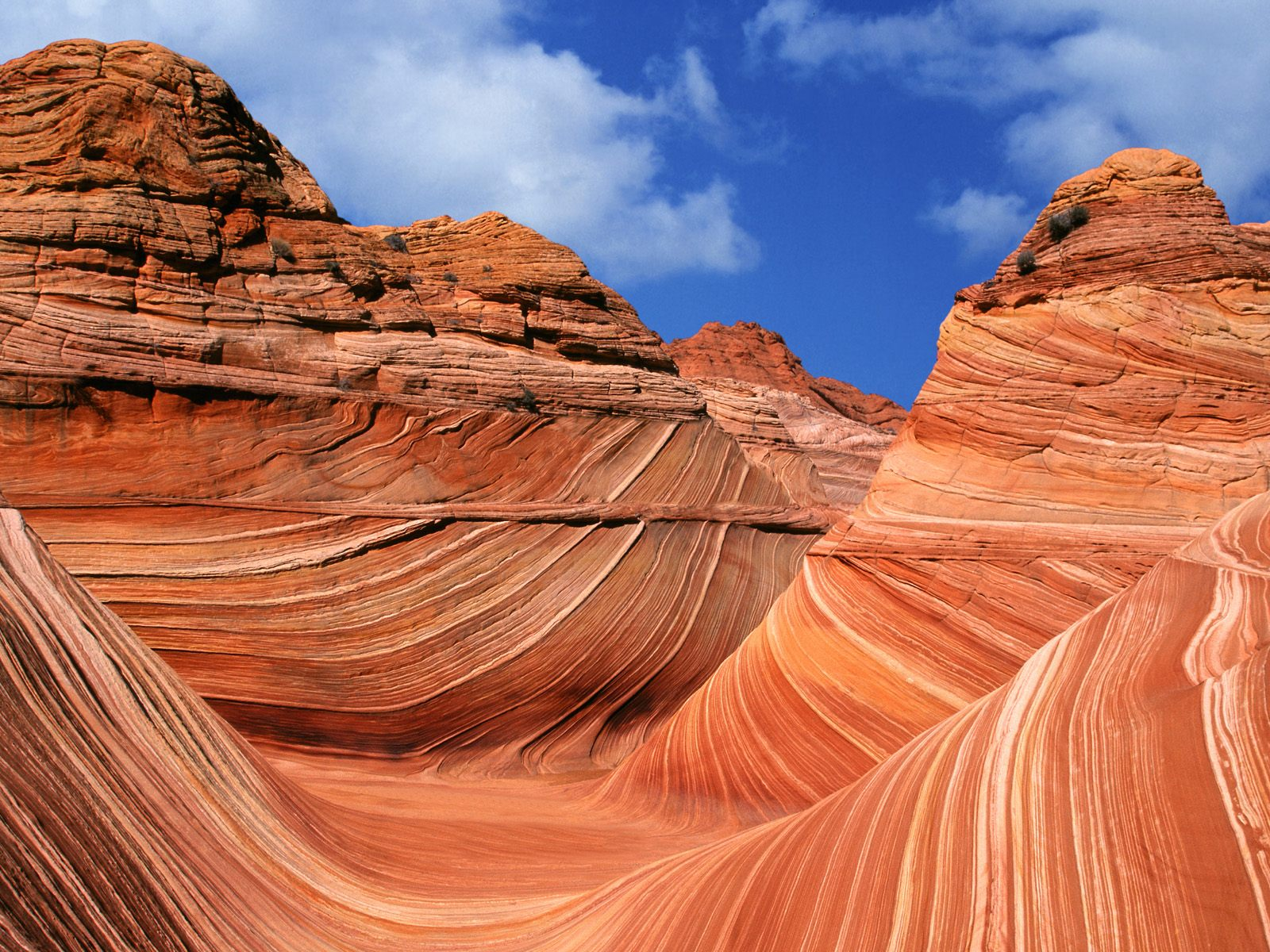 What A Wonderful World The Wave Coyote Buttes Arizona Usa