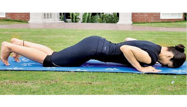 अष्टांग नमस्कार (Ashtanga Namaskara - Eight Limbed pose or Caterpillar pose) Surya Namaskar (Yoga)