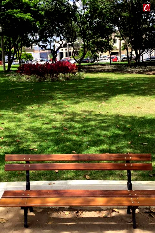 ambiente de leitura carlos romero cronica conto poesia narrativa pauta cultural literatura paraibana Gonzaga Rodrigues eleicoes municipais 2020 joao pessoa
