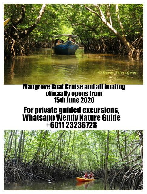 Langkawi Nature Tour