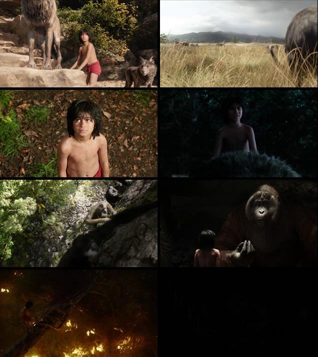 The Jungle Book 2016 English 480p BRRip