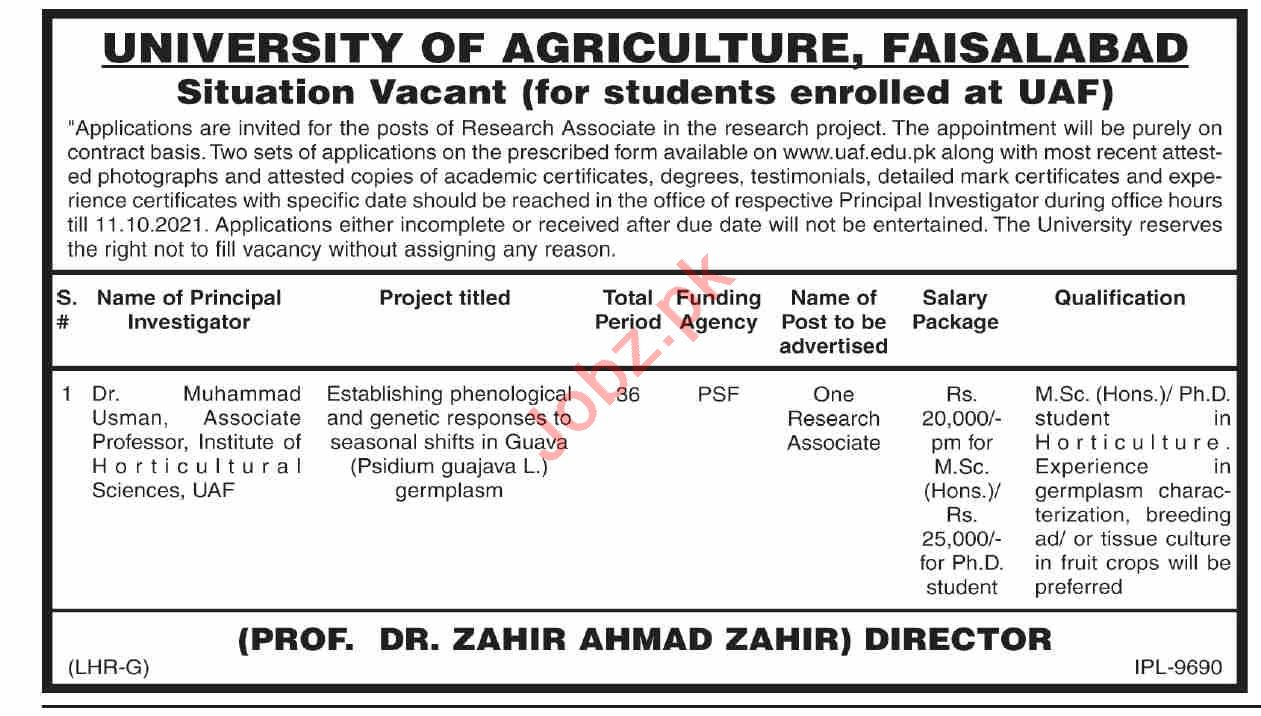 Jobs in University of Agriculture Faisalabad