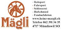 http://heinz-maegli.ch/