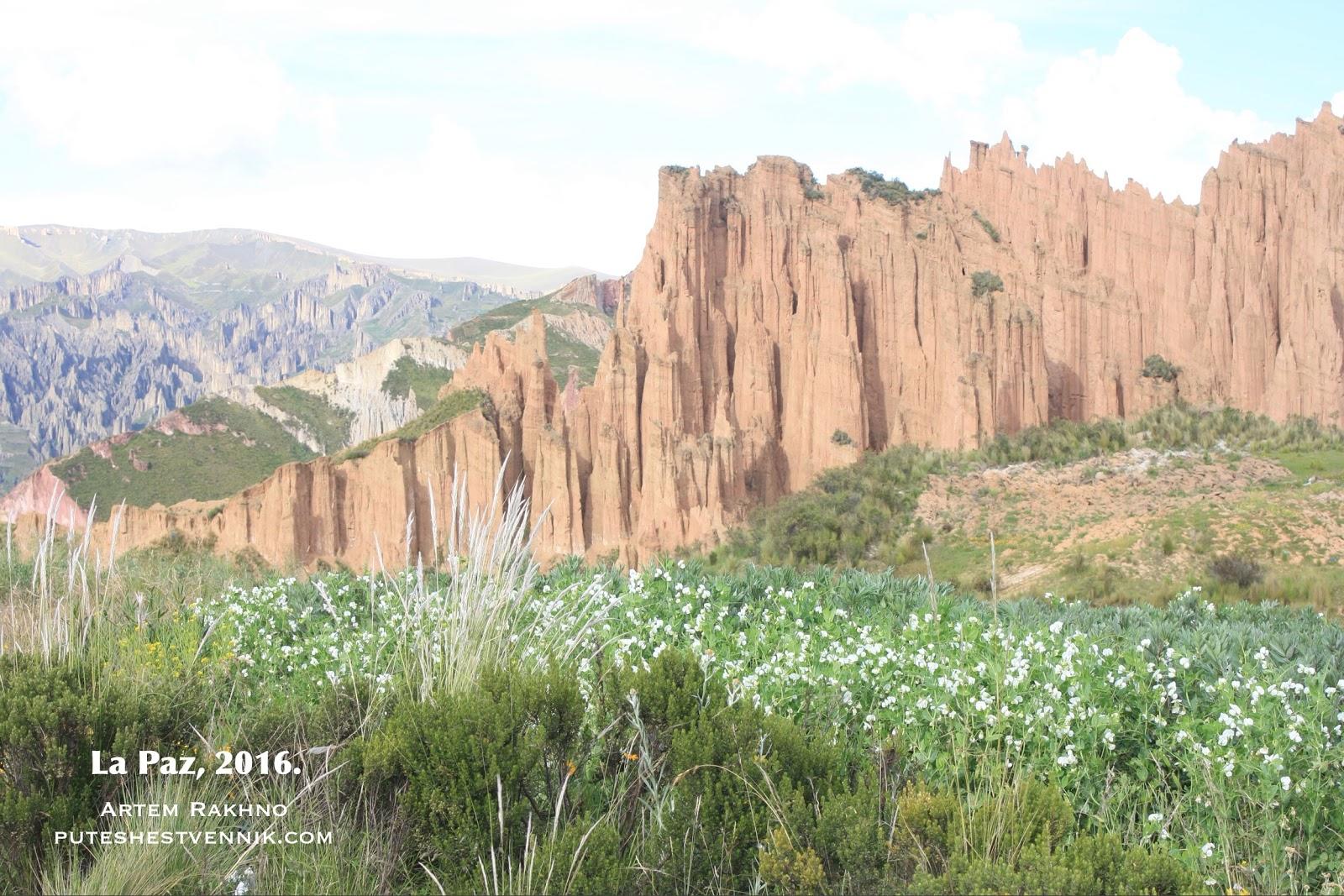 Цветы и горы Боливии