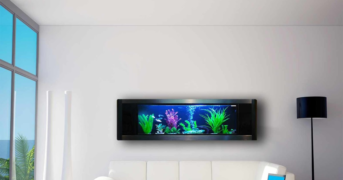 Wall Mounted Aquarium: Wall Mounted Aquarium