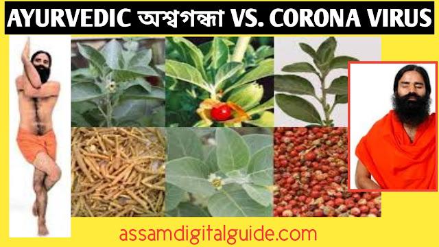 ayurvedic assaghandha and corona virus