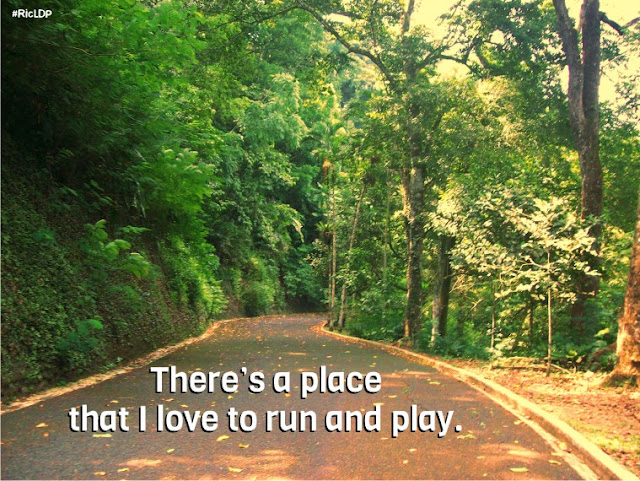 There's a place that I love to run and play.