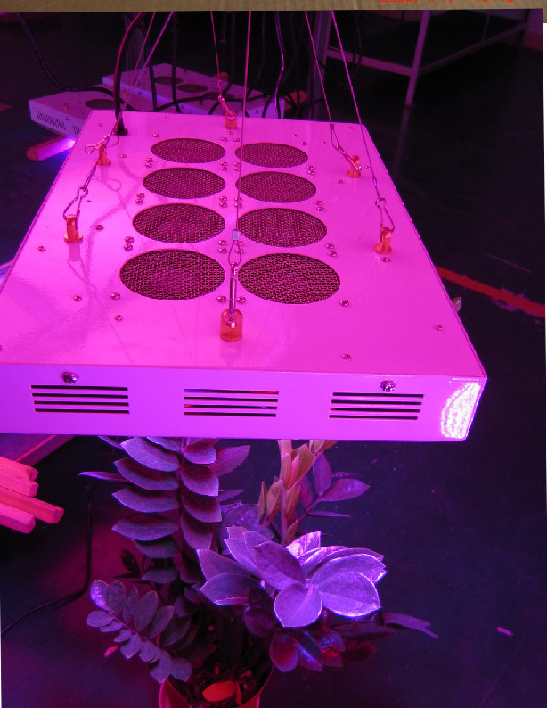 Online Reviews To Find The Best Led Grow Lights