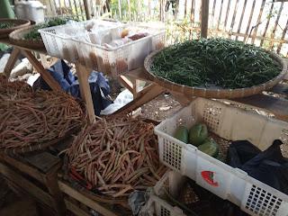 usaha jualan sayuran