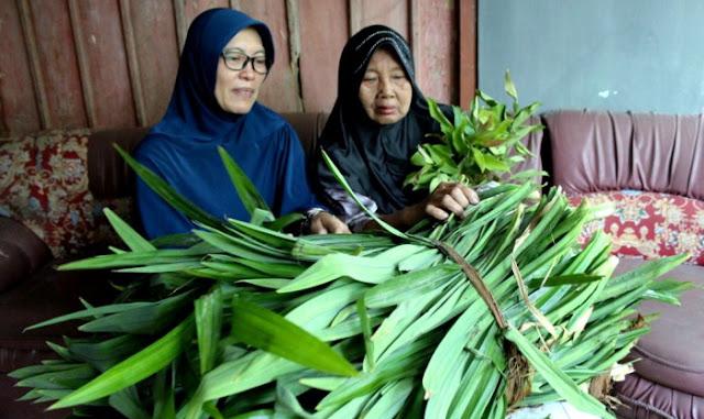 Wakafkan Tanah Warisan Seharga 2,5 Miliyar, Nenek Ini Malah Jualan Daun Untuk Hidup Sehari-hari