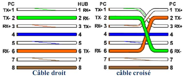 Les supports physiques de transmission : les conventions de câblage | Examens, Exercices