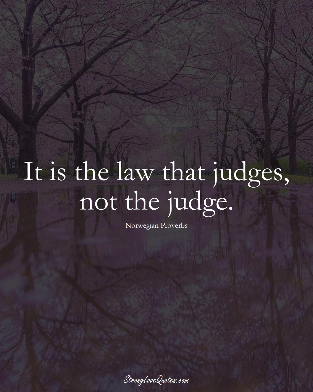 It is the law that judges, not the judge. (Norwegian Sayings);  #EuropeanSayings