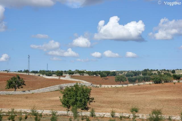 Vista panoramica sulla campagna nei pressi di Alberobello