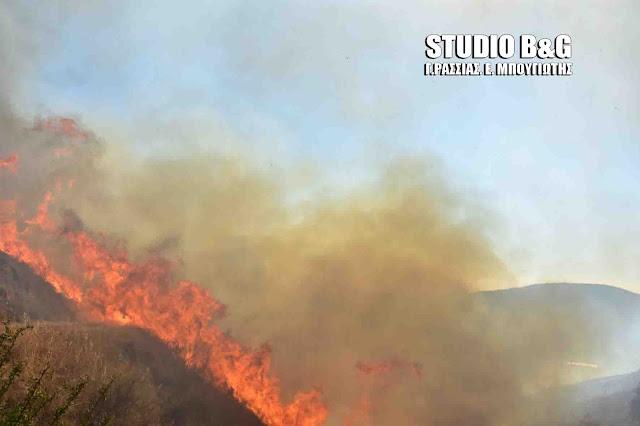 Πυροσβεστικές δυνάμεις από την Αργολίδα σε πυρκαγιά στην Μάνη