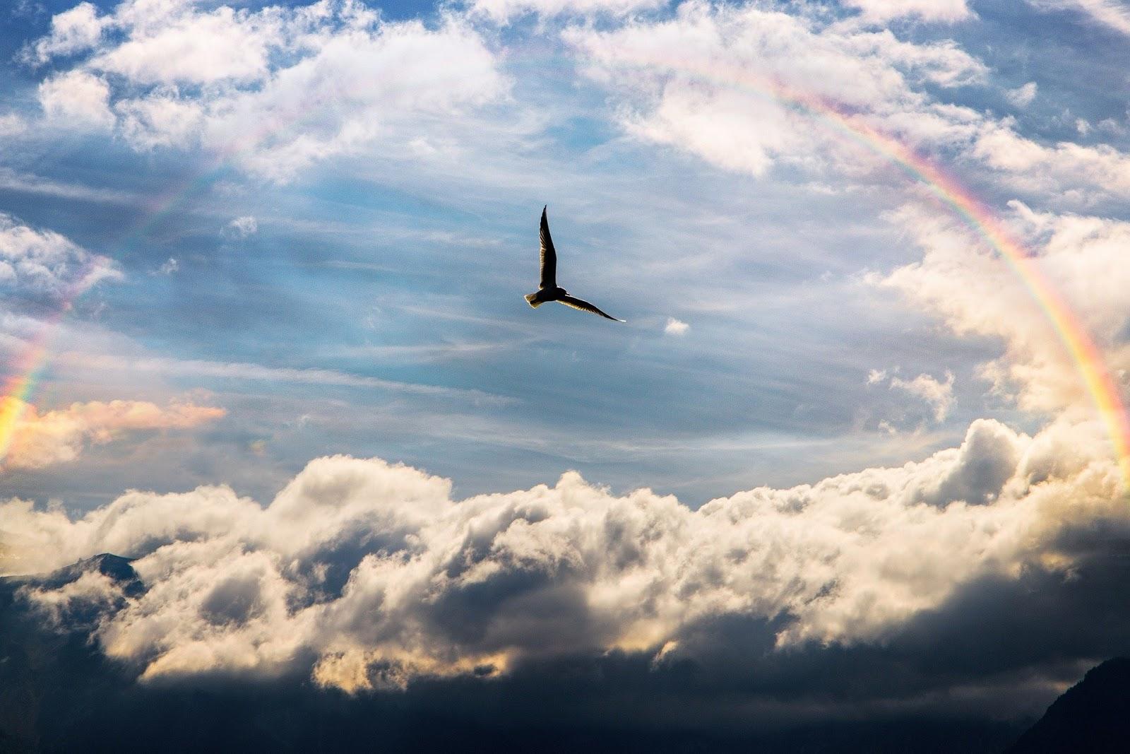 medytacja, droga do wolności