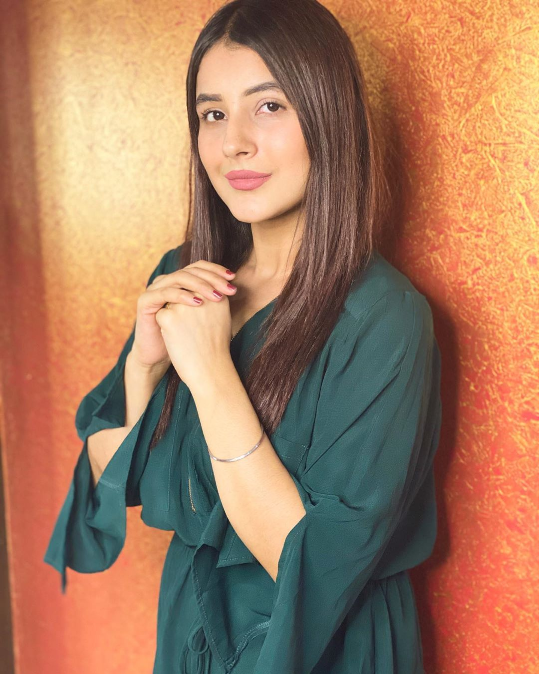 shehnaaz-gill-is-getting-so-much-money-for-endorsement-more-than-many-tv-stars-including-asim-riaz
