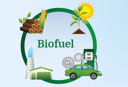 Biofuels as Alternative Sources of Energy