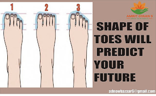 SHAPE OF TOES WILL PREDICT YOUR FUTURE
