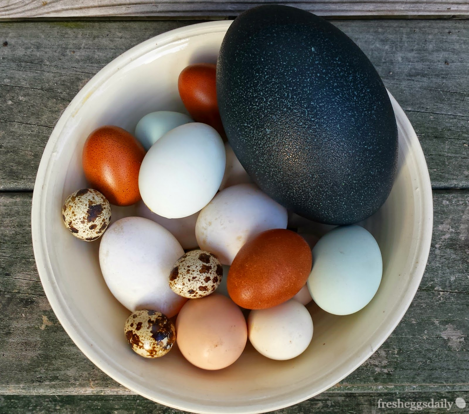 Duck Egg Blue And Black Kitchen