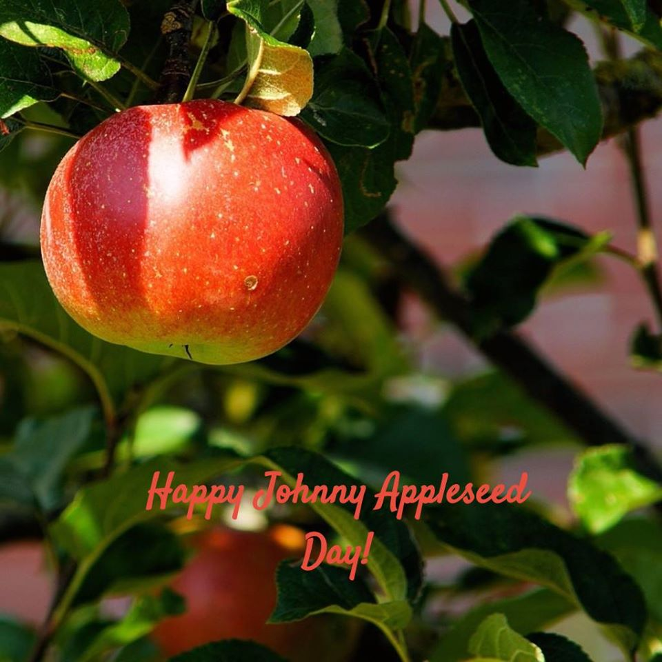 Johnny Appleseed Day Wishes Photos