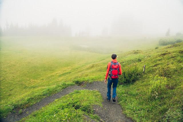 Waldwellness-Weg Saalbach | Regenwandern im #HomeofLässig | Waldbaden in Saalbach 05