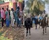 Bihar Chunav 1st Phase Poll: कोरोना के खतरे व नक्सली खौफ के बावजूद ठीकठाक पड़े वोट, 54% मतदान