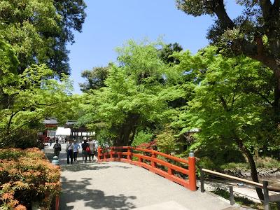鶴岡八幡宮の新緑