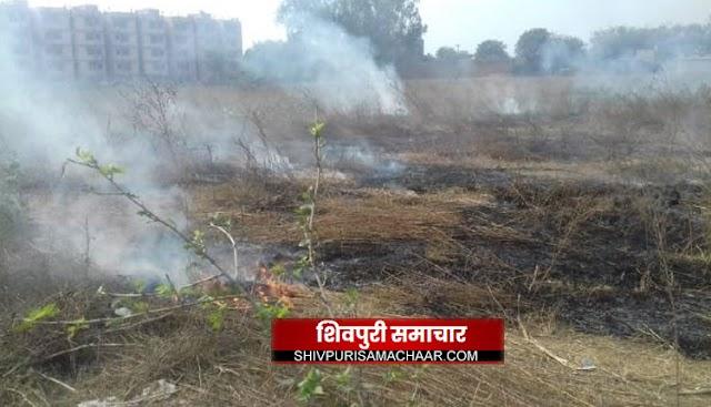 पिचिंग ग्राउण्ड में लगी आग, धुंआ उठता देख घबराए लोग | Shivpuri News