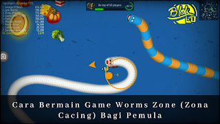 worms zone world record