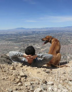 www.petfriendlylasvegas.com