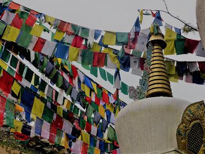 El proyecto de India está situado en McLeod Ganj, donde vive el Dalai Lama